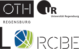 Regensburg Center of Biomedical Engineering Sticky Logo