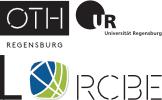 Regensburg Center of Biomedical Engineering Logo